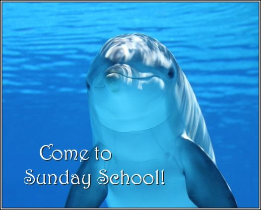 sunday school dolphin