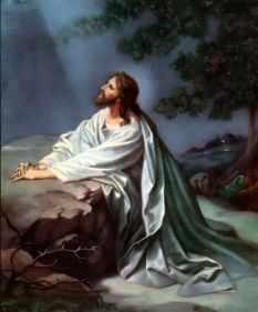 Jesus prays in the garden  Matthew 26:39-40