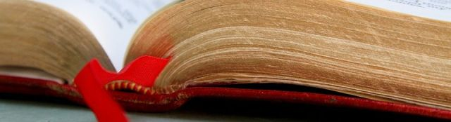 bible8